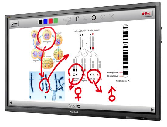 ViewSonic представляет 84? сенсорный дисплей с разрешением 4K