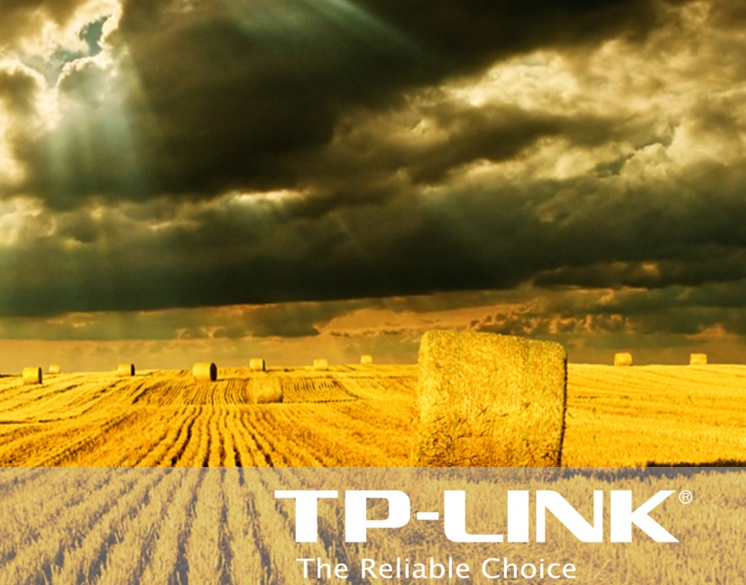 TP-LINK_2014_annual_market