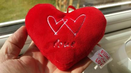 heart-m9