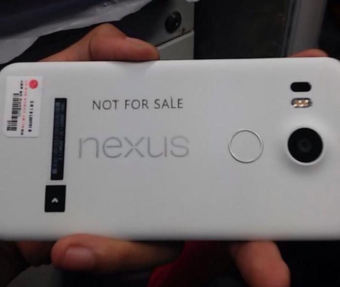 nexus 5_01