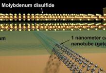 1-nm-transistor