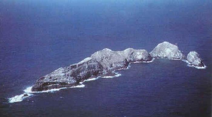 necker island casper octupus