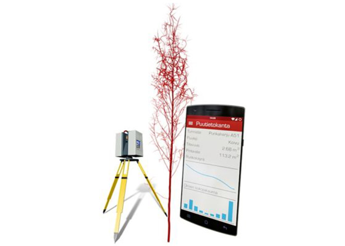 Лазерное сканирование дерева