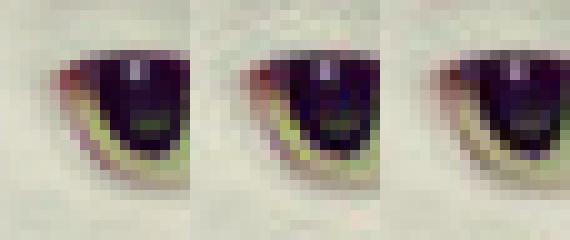Новый алгоритм Google сжимает файлы JPEG на 35 процентов