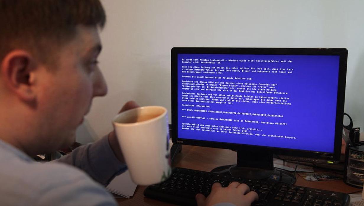 Российские учёные из НИИ овцеводства и козоводства Ставрополя разработали убийцу Windows