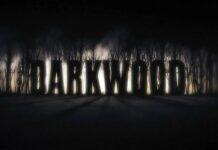 Darkwood раздают бесплатно на торрент-трекерах
