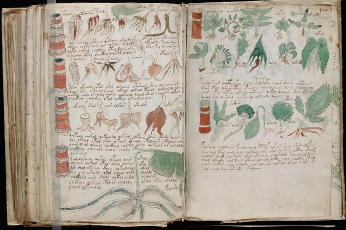 ИИ расшифрует таинственный манускрипт XV века, написанный на неизвестном языке