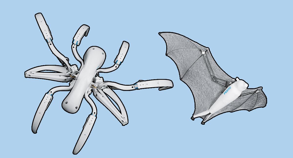 BionicFlyingFox spider