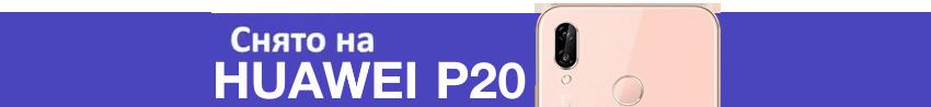 p20 rn 850 1