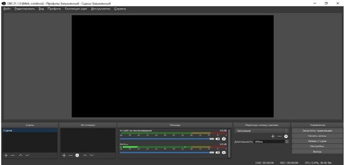 Как снять видео с экрана ПК - инструкция для начинающих