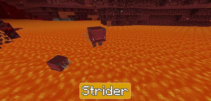 Strider in Minecraft PE 1.16.200