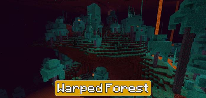 Warped Forest in Minecraft PE 1.16.200