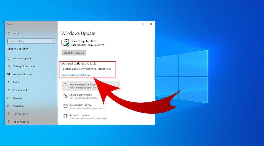 Microsoft Windows 10 device usage