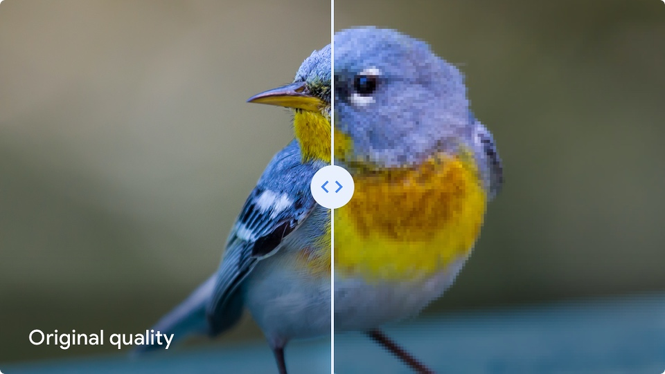 Google Photos Difference