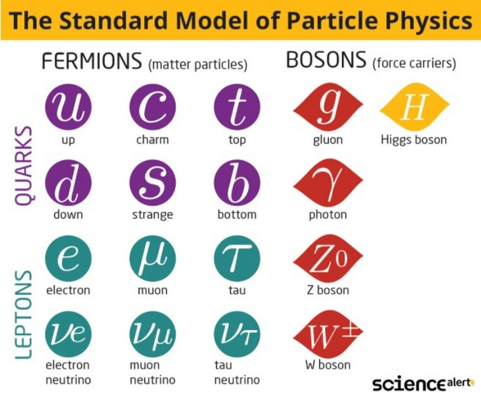 standart model of particle physics
