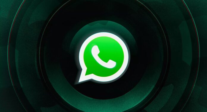 WhatsApp logo by Alex Castro / The Verge