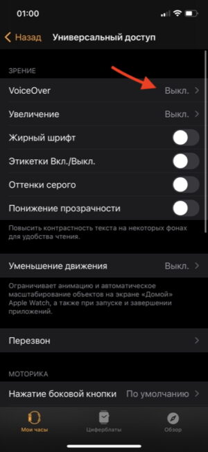 Универсальный доступ VoiceOver