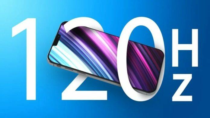 Samsung Display iPhone 13 120 Hz