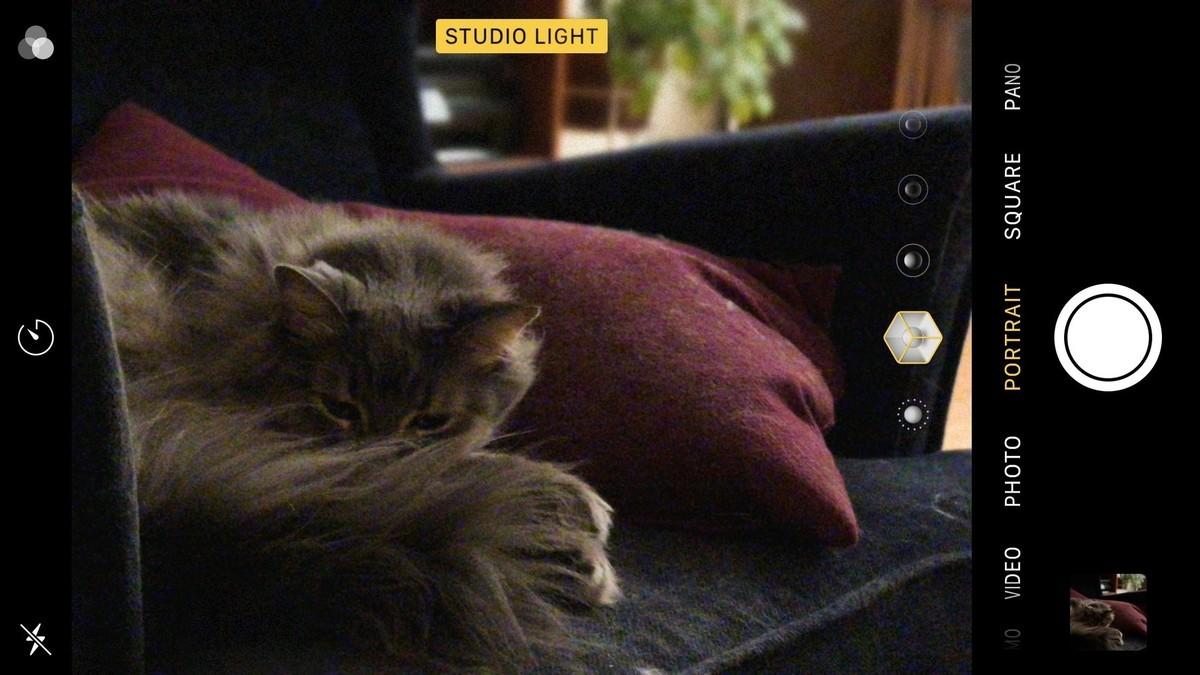 Портретный режим - камера iPhone